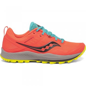 Chaussures Homme Saucony Peregrine 10 - Montisport.fr
