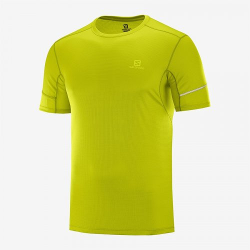 Salomon Agile MC Tee - Homme